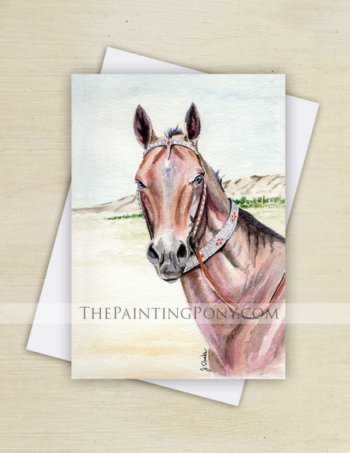 Bay Akhal-teke Horse Watercolor Art Note Cards (10 pk)