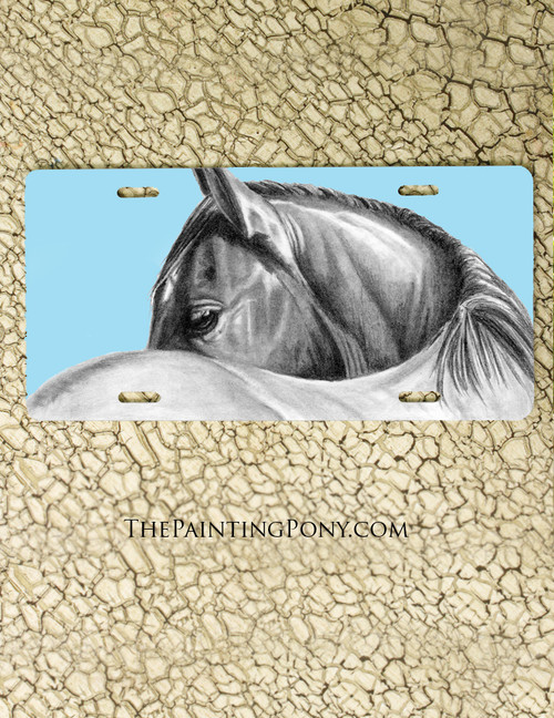 Horse Eye Equestrian Vanity License Plate