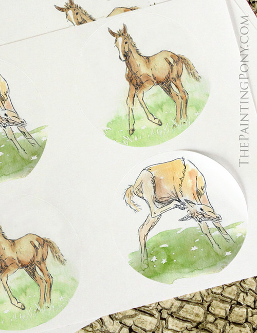 Whimsical Young Horse Foals Equestrian Sticker Set
