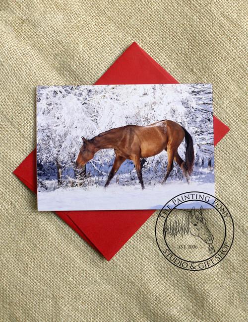 Winter Wonderland Horse Lover Equestrian Christmas Cards (10 pk)