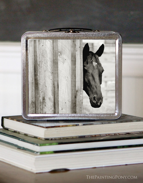 Curious Black Horse Head Equestrian Lunch Box