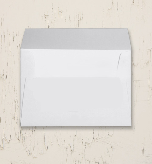 5x7 Custom Pre-Addressed Variable Data Envelopes (10 count)