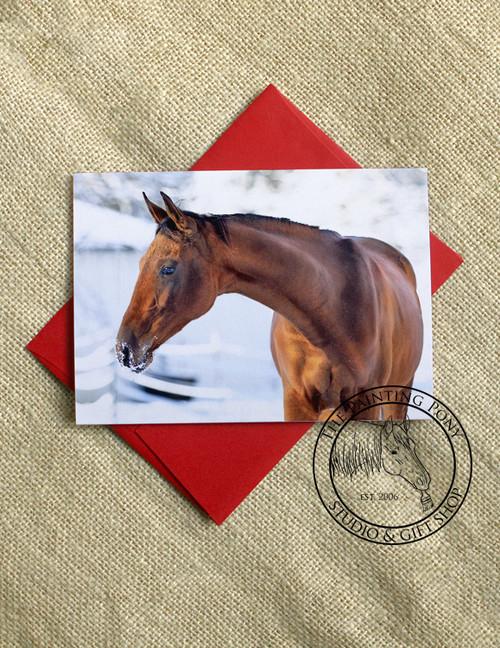 Winter Akhal-teke Horse Head Equestrian Christmas Cards (10 pk)