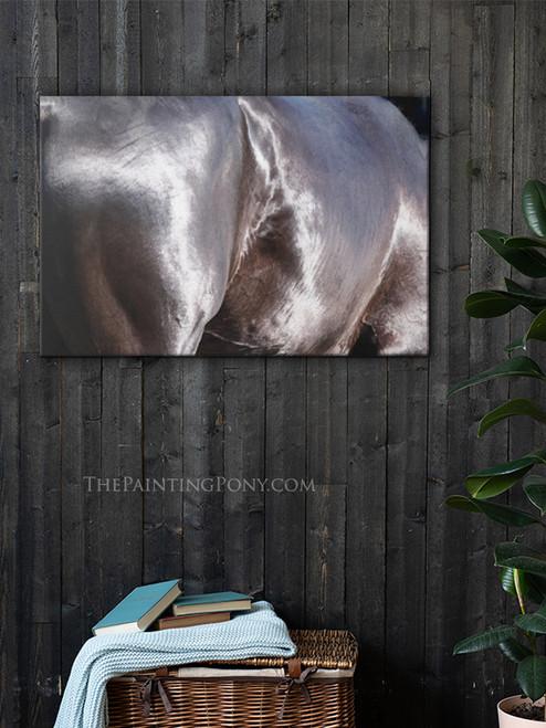Akhal-Teke Shine Equestrian Fine Art Gallery Wrap