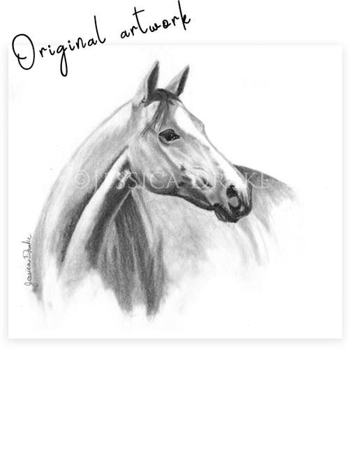 """Goldka"" Graphite Horse Head Study"