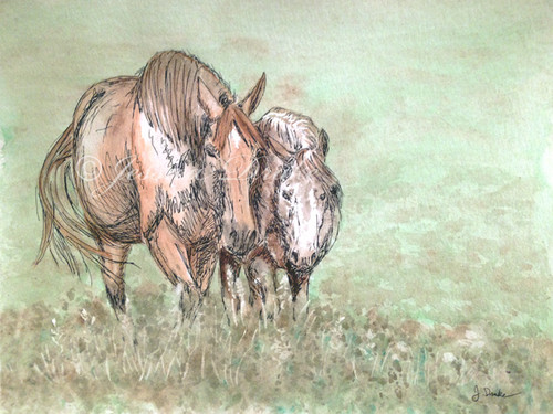 Original watercolor horse painting.