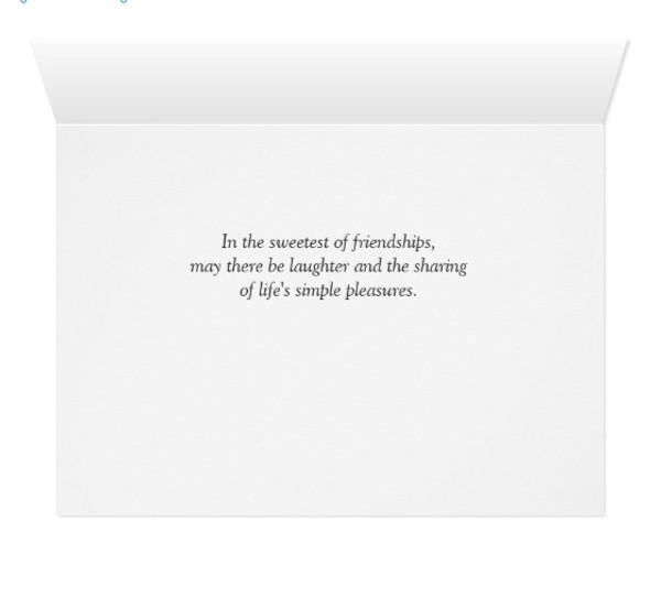 Horse Friendship Birthday Greeting Card