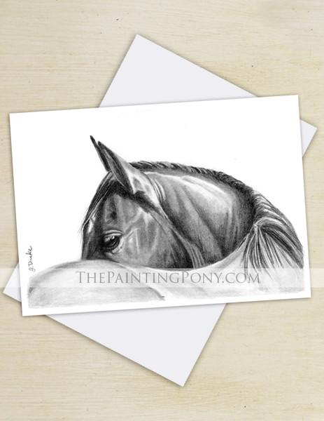 Graphite Horse Eye Art Equestrian Note Cards (10 pk)