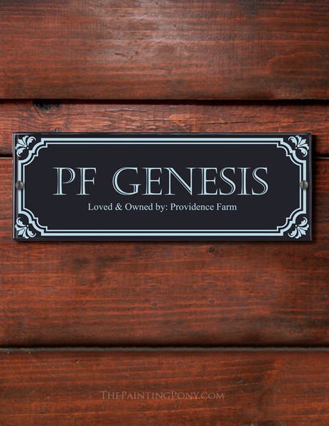 Custom Classic Borders Acrylic Horse Stall Name Plate