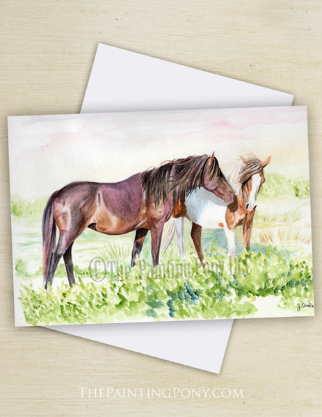 Chicoteague Pony Note Cards (10 pk)