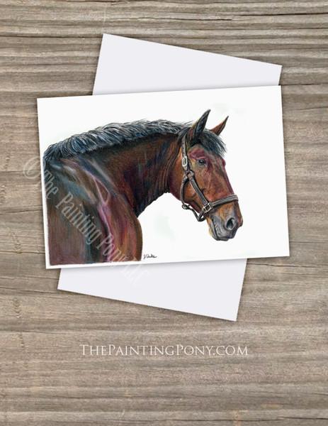Cleveland Bay Horse Head Fine Art Note Cards (10 pk)