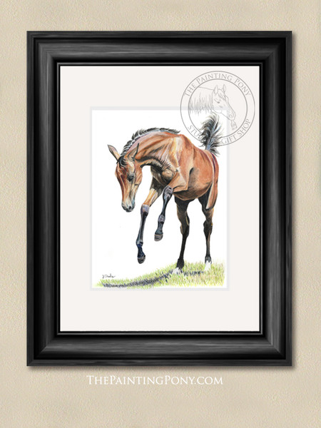 Playful Young Horse Equestrian Art Print