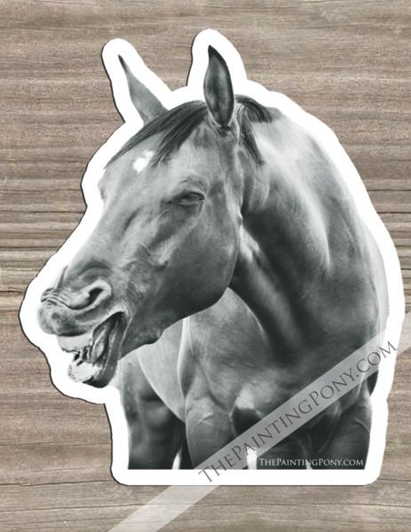 Laughing Horse Equestrian Die-Cut Vinyl Sticker