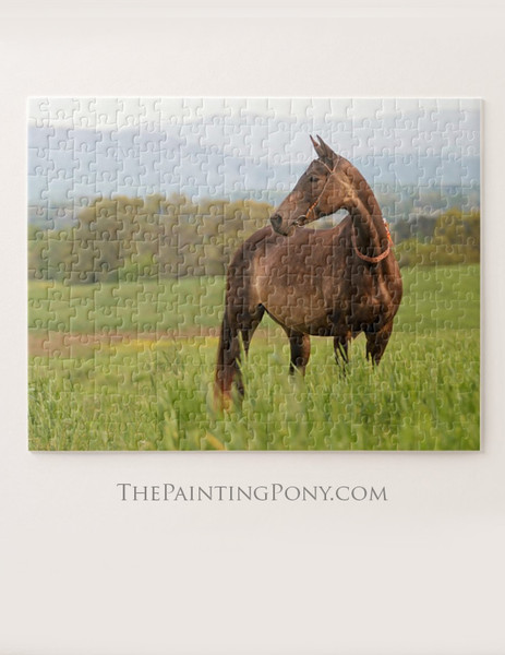 Akhal-teke Horse Equestrian Puzzle