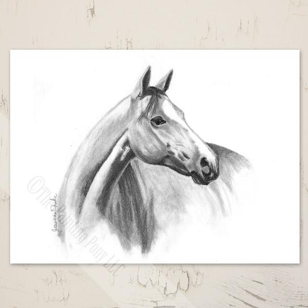 horse head artwork blank equestrian note cards