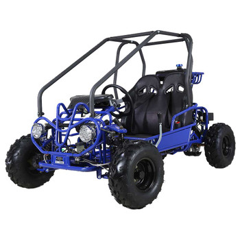 Mini Raptor 110cc Blue Kids Go Kart