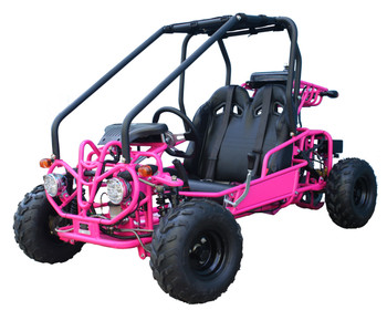 Mini Raptor 110cc Pink Kids Go Kart