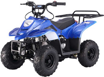 Private Blue 110cc ATV- Small Size