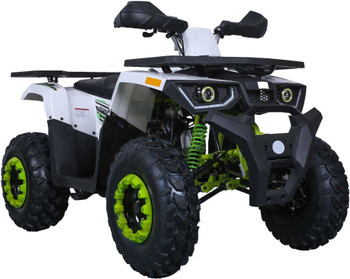 Grappler White N Green 200CC ATV Adult Size