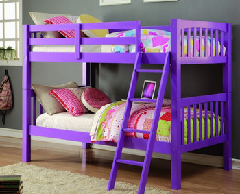 Alaina Grape Twin Bunkbed