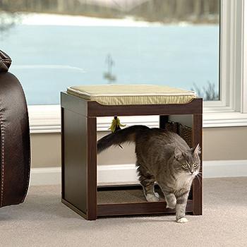 Cayden Pet Cube