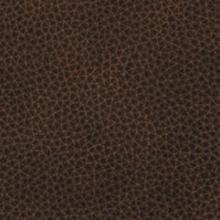 ruiz-brown-09.jpg