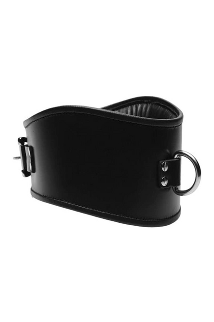 Padded Locking Posture Collar With Leash