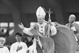 The Saint Who Influenced Pope St. John Paul II's Profound Devotion to Mary