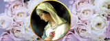 How Mary Became Known as Rosa Mystica