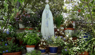 A Marian Garden Made in Heaven