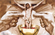 July: Month of Devotion to the Precious Blood of Jesus