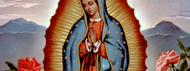 St. Juan Diego, Our Lady's Most Humble Son