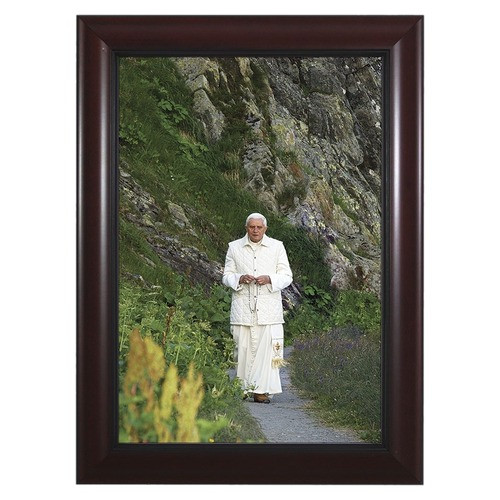 Pope Benedict in Mountains w/ Cherry Frame