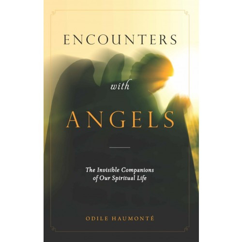 Encounters with the Angels - The Invisible Companions of our Spiritual Life
