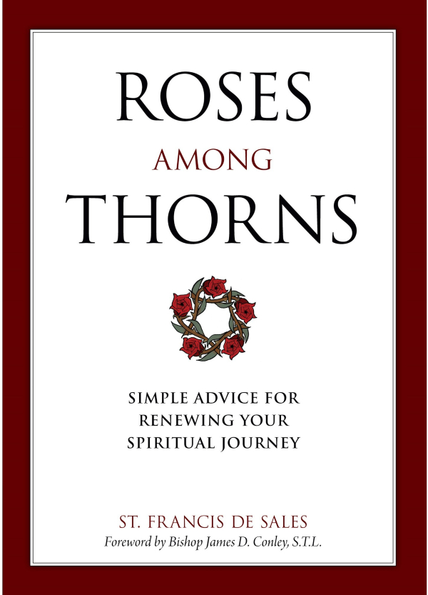 Roses Among Thorns book