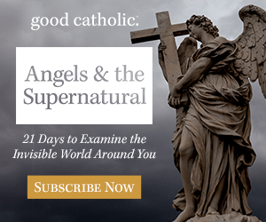 Good Catholic Series