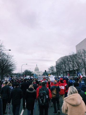 The March for Life in DC