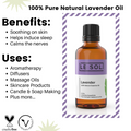 Lavender Essential Oil benefits and uses