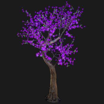 Cherry Blossom Tree 7 Feet 800 Led Lights Purple Color Morgan Style