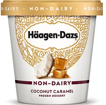Haagen-Dazs, Non-Dairy Coconut Caramel, 14 oz. 'Pint' (1 count)