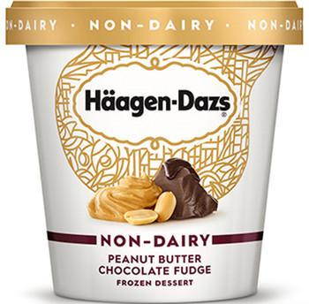 Haagen-Dazs Non-Dairy Peanut Butter Chocolate Fudge, 14 oz. 'Pint' (1 count)