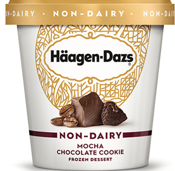 Haagen-Dazs Non-Dairy Mocha Chocolate Cookie, 14 oz. 'Pint' (1 count)