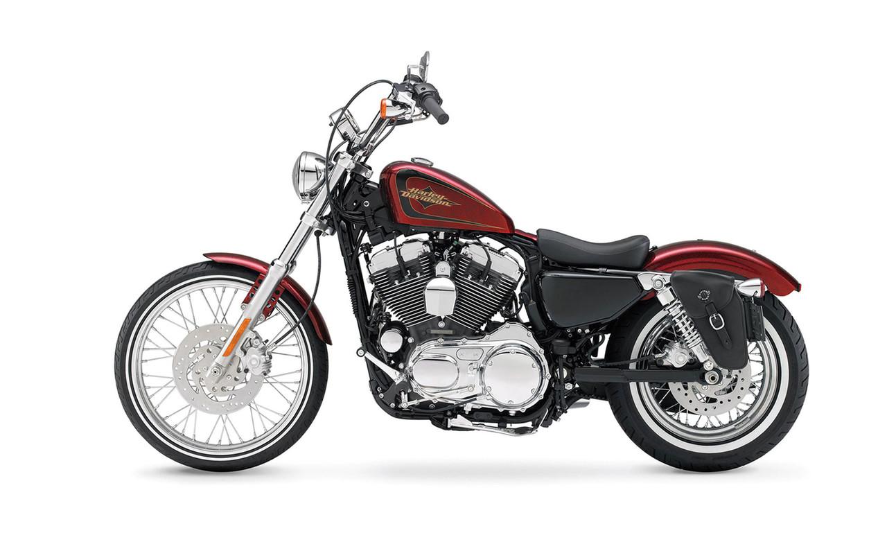 Viking Solo Bag For Harley Sportster Bag on Bike View