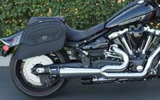 Ray's Yamaha Raider w/ Warrior Series Saddlebags
