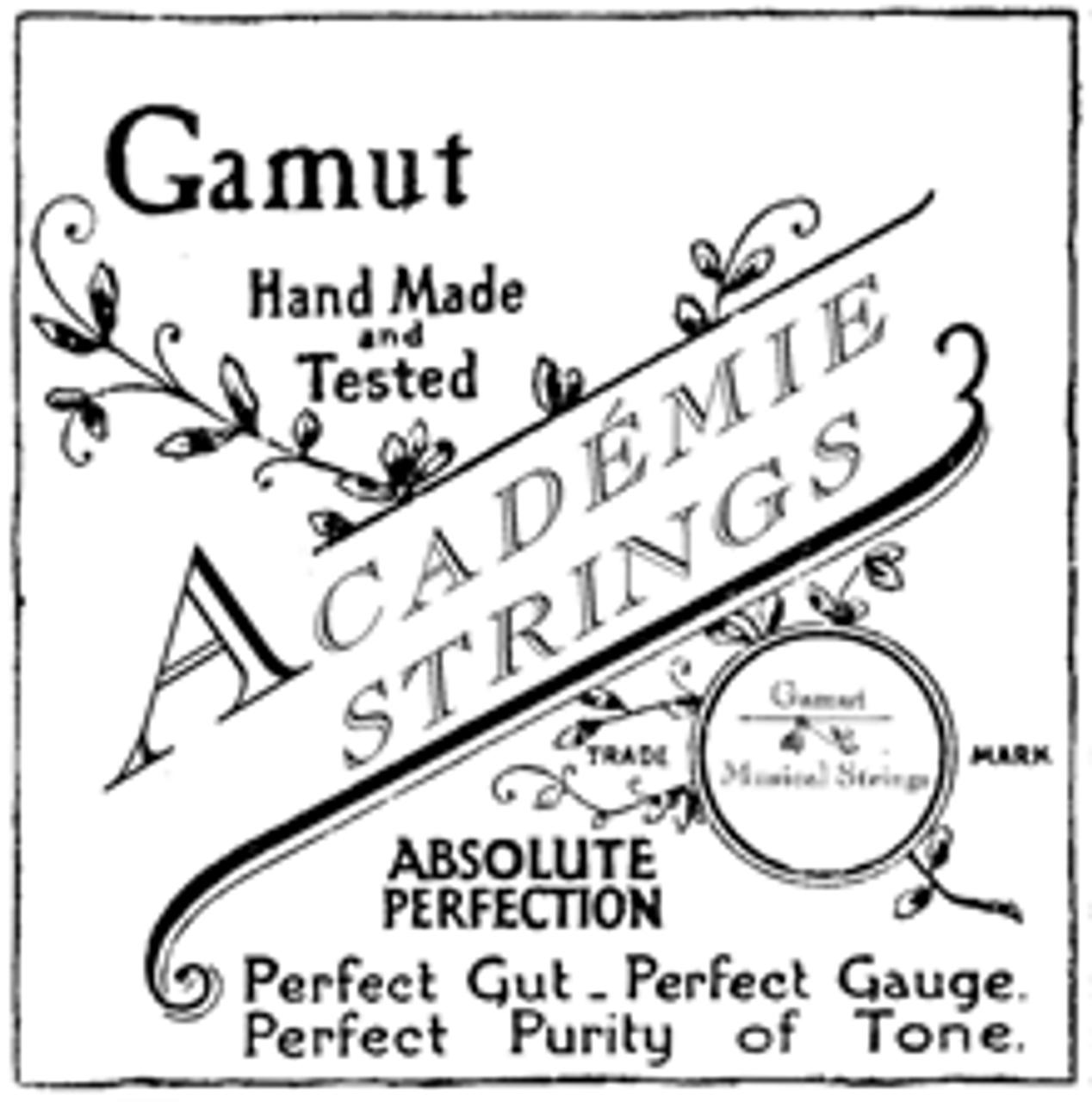 "Set ""G"" violone medium+ gauge"