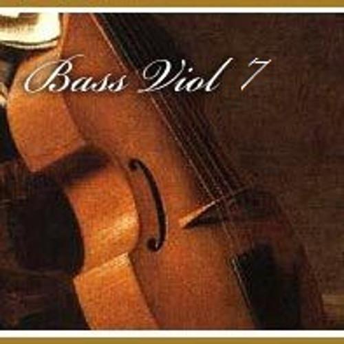 Seven String Bass Viol String Club