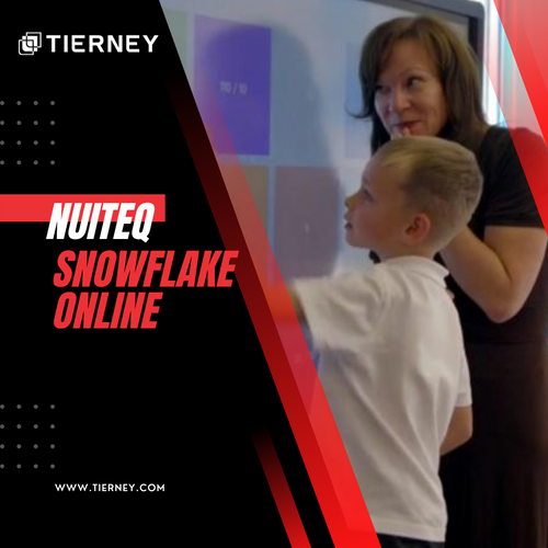 Creating Game-like Activities with Snowflake Online