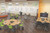 MooreCo Classroom X Media (for 25)