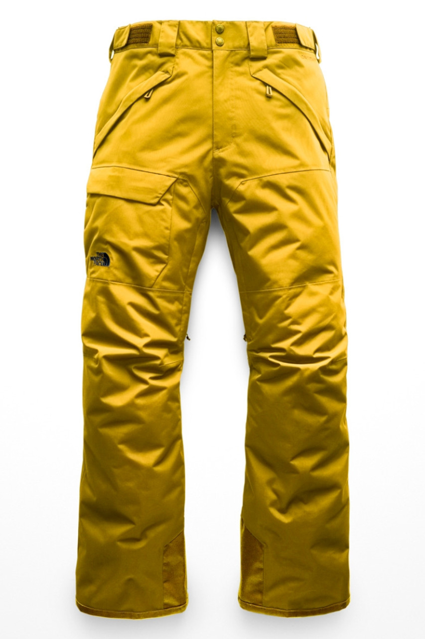 5ed5b5d3163 The North Face Freedom Insulated Ski Pant | Men's
