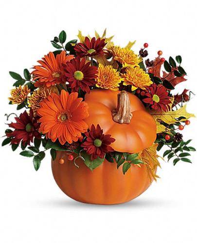 Fall Country Pumpkin
